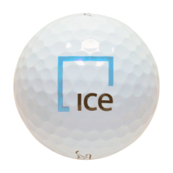 IE One Dozen Golf Balls-Titleist Pro V1-ICE Thumbnail